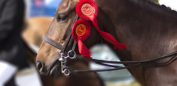 2019 County Show Entry Forms | Royal Isle of Wight Agricultural Society